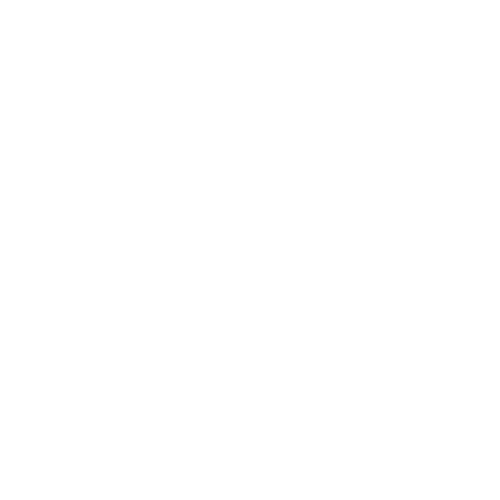 Einstein Center Neuroscience